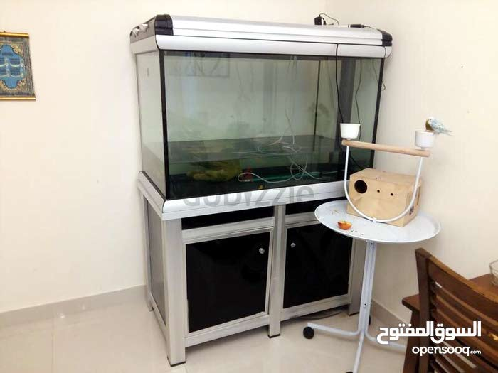 A large aquarium with a stand for as less as 950 price not negotiable