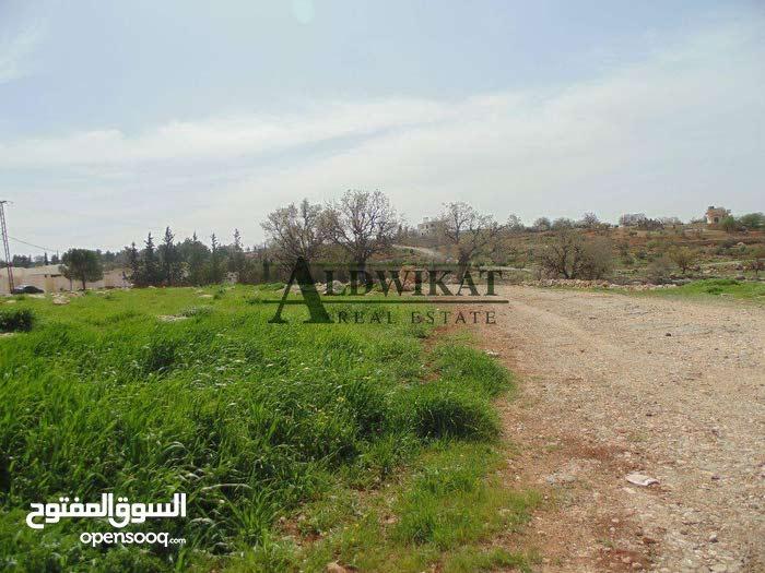 ارض بواجهة مميزة للبيع في موبص , مساحة الارض 30,851م