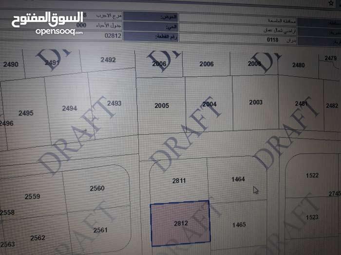 أرض 912 م للبيع في بدران مرج الأجرب