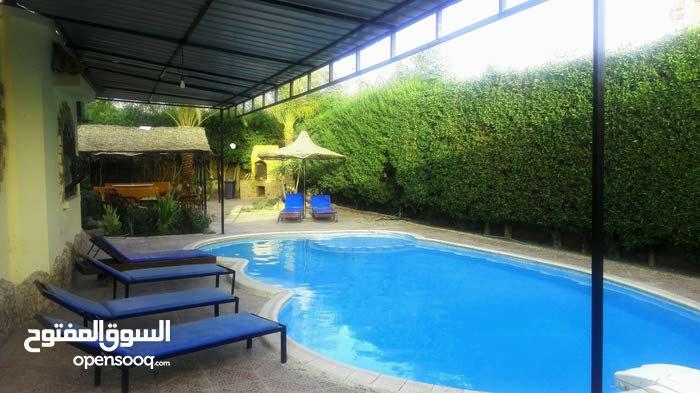 فيلا خاصة بحمام سباحة خاص وحديقة كبيره خاصة للايجار اليومى
