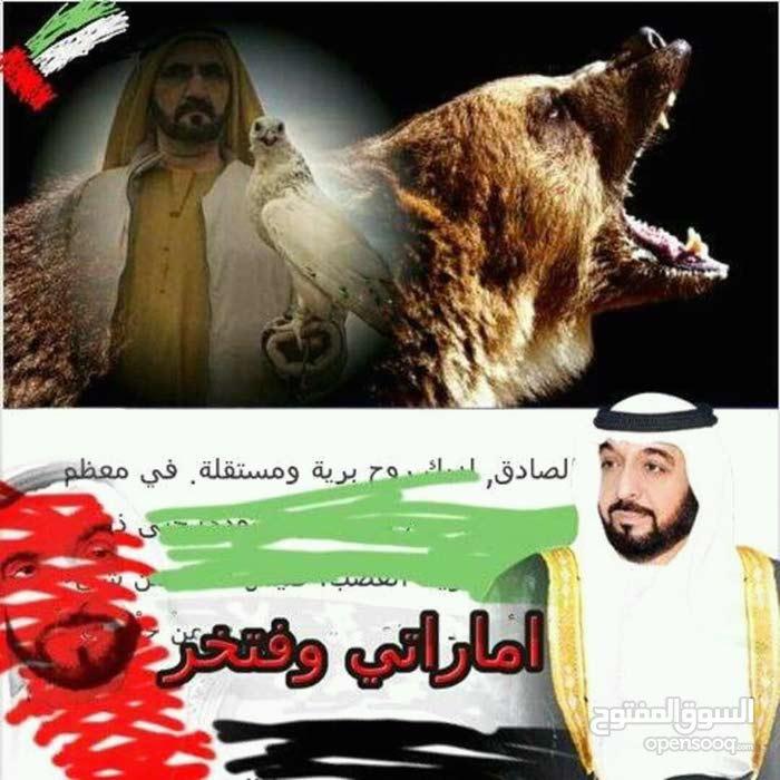 عايز لى أقامه سايق خاص فى السعوديه مكه أو المدينه المنور