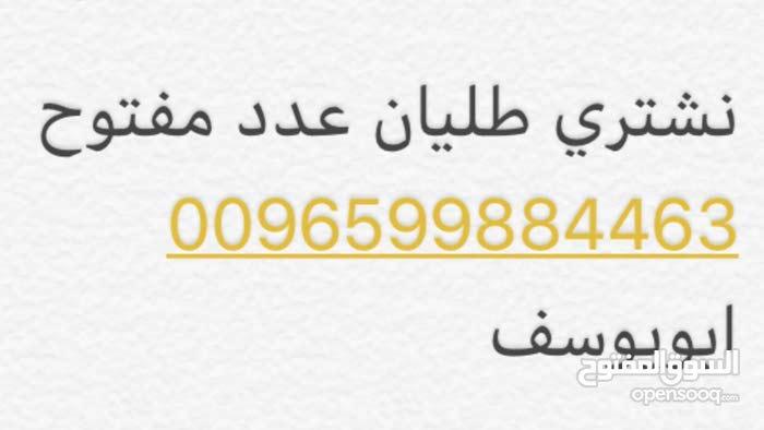 مطلوب طليان خرفان نعيمي ( عدد مفتوح ) سعر الجملة