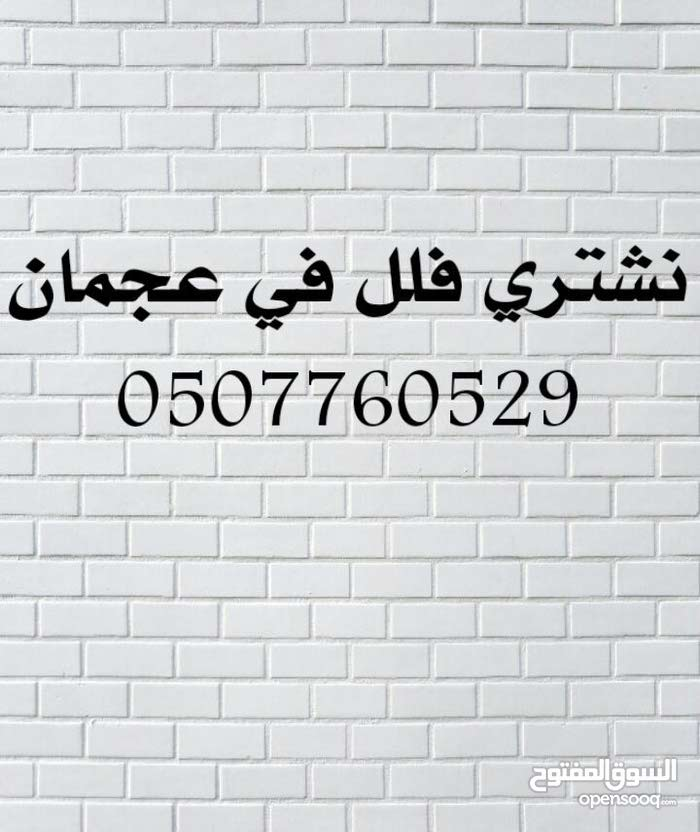 مطلوب بيت شعبي للشراء في عجمان منطقه مشيرف من المالك