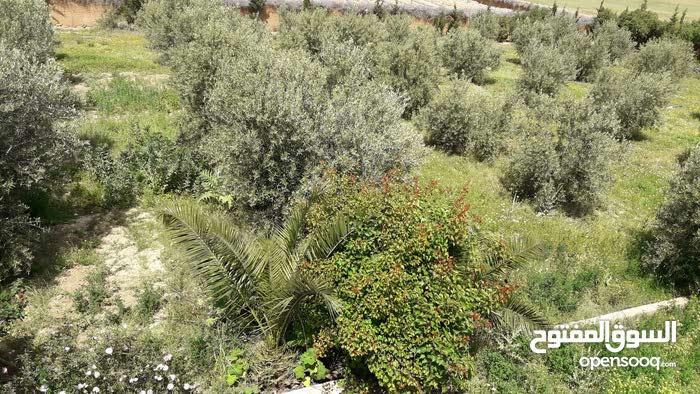 ارض للبيع في مدينة مراكش