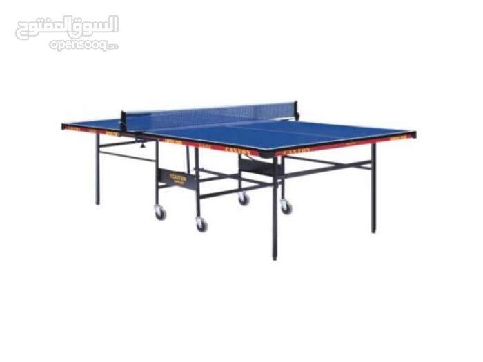 In Door Tennis Table, Blue Folding