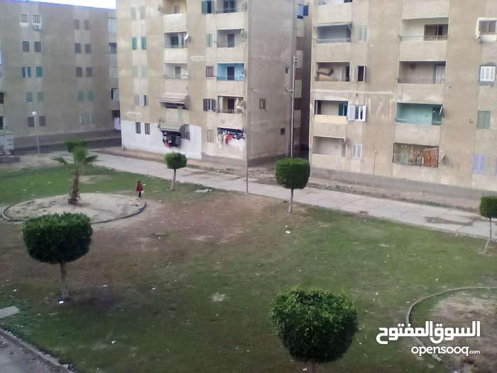 for rent apartment in Damietta