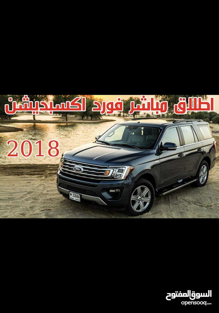 Gasoline Fuel/Power   Ford Expedition 2018