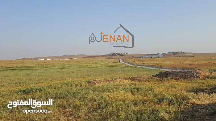 قطعة ارض مميزه بسعري مغري الذهيبه الغربيه قري شارع عمان التنموي (شارع الميه )