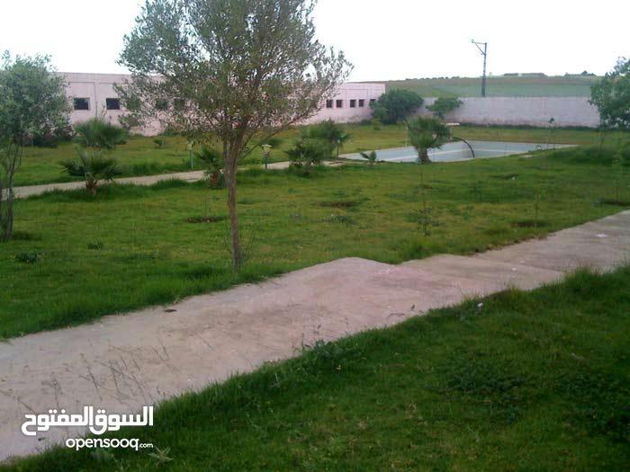 مزرعة للبيع بتمن جد مناسب فوق مدينة سطات ب-13 كم المغرب