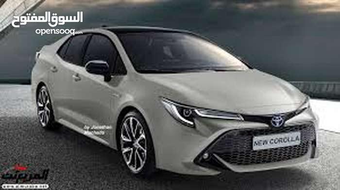 مطلوب سيارات تويوتا كورولا لشركة بترول خليج السويس بدون سائق