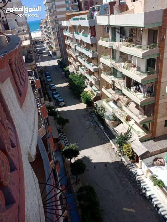 شقة للايجار الشهرى 3سنوات مع امكانية التجديد مفروش بشاطىء النخيل - الاسكندرية