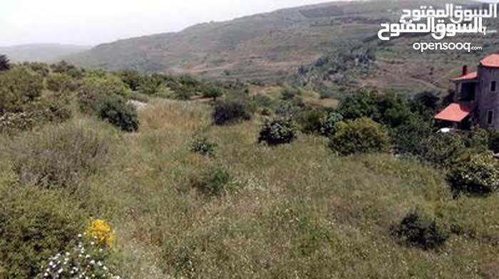 ارض عقارية 400م في حمص