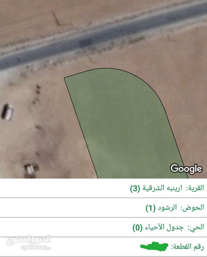 للبيع ارض 3.85 دونم في الجيزة ارينبه الشرقيه