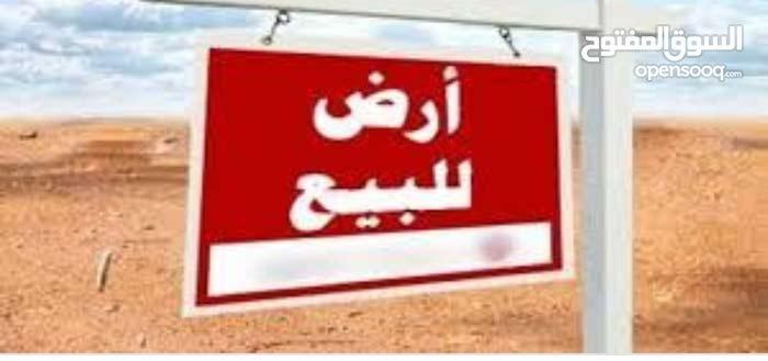مرسي مطروح