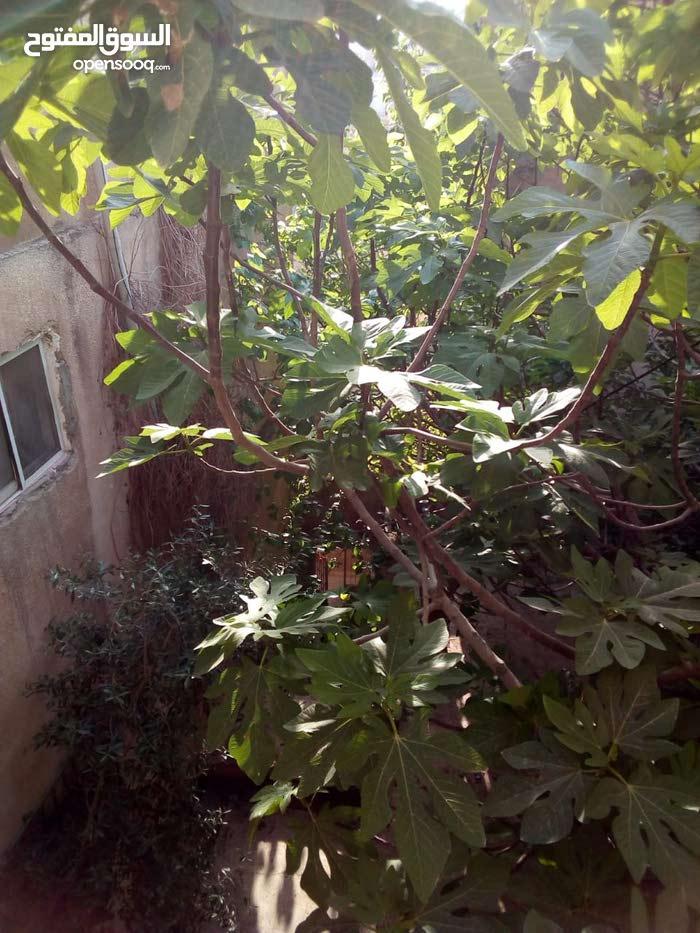 بيت في شارع الأردن سفح النزهة منطقة شعبية للبيع
