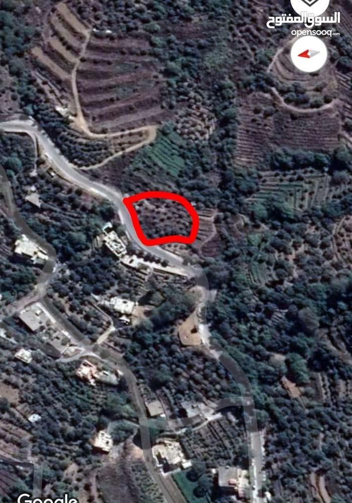 جبل لبنان