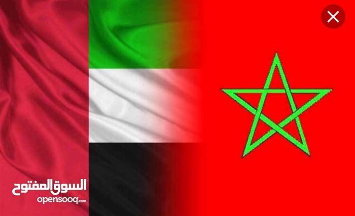 ثلاث مغربيات يقمن في الإمارات