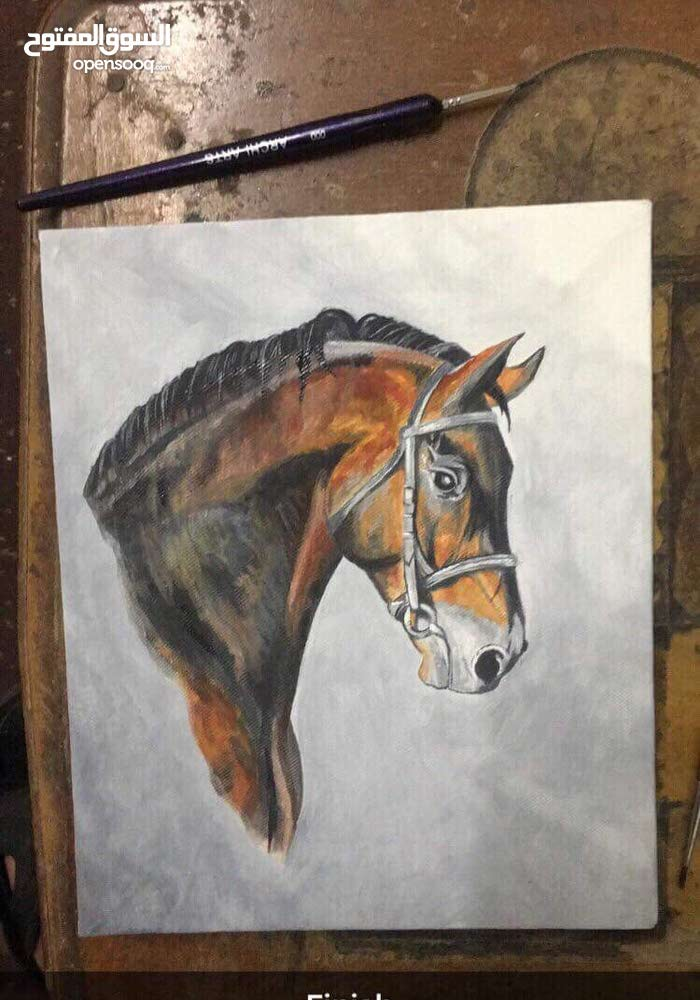 لوحة حصان / الوان زيتية / لوحة فنية