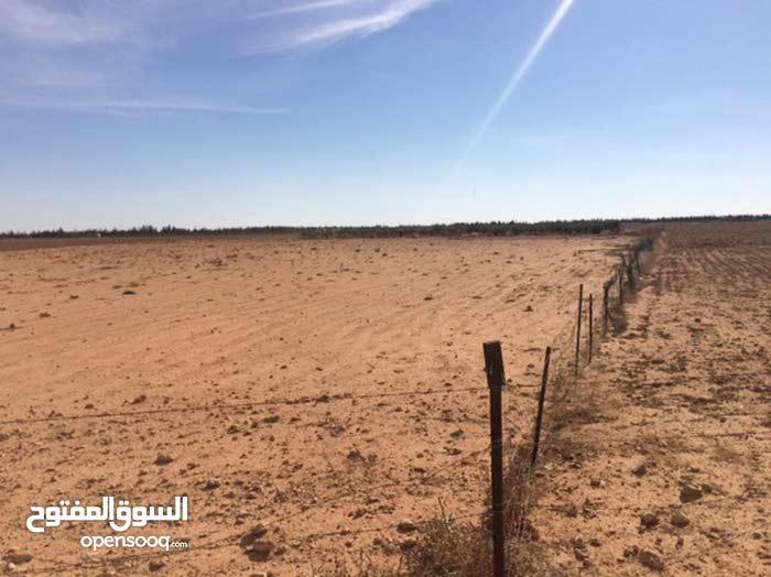 9 تسعه هكتار في جردينه مزارع مشروع النهر الصناعي