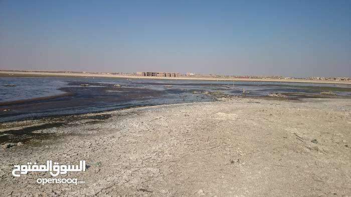 أرض سياحية على بحيرة قارون ـ مصر - 350 سعر المتر