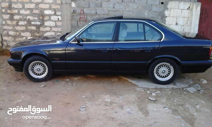 Gasoline Fuel/Power   BMW 520 1996