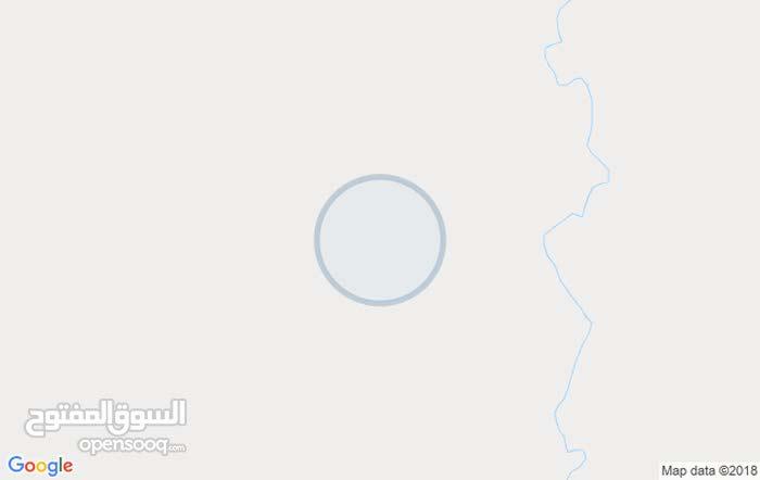 الدائري عن الجامعة الجديدة ~امام ايحل