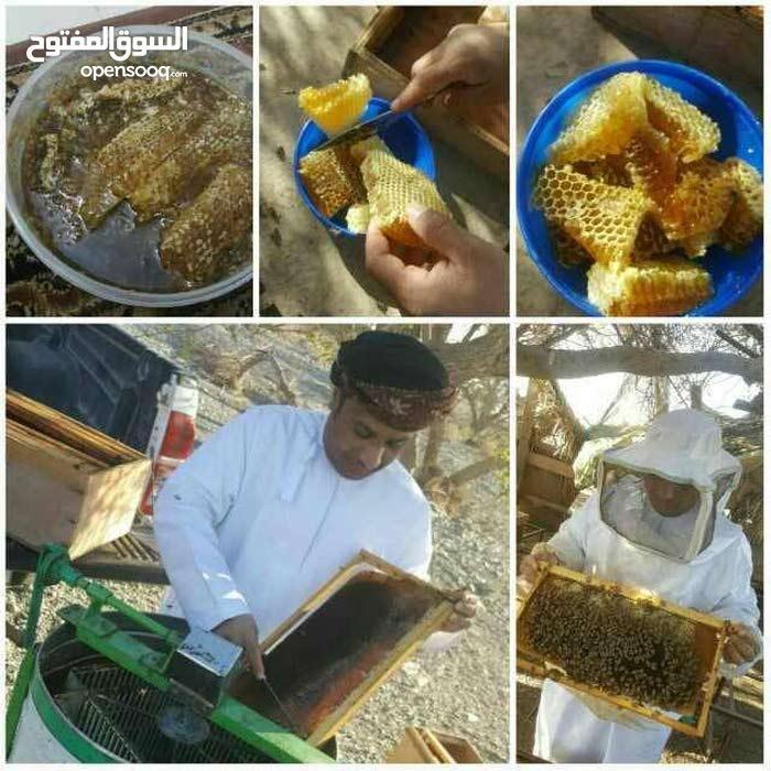 عسل البرم العماني وعسل السدرالعماني والباكستاني وعسل الدبس( النخيل)