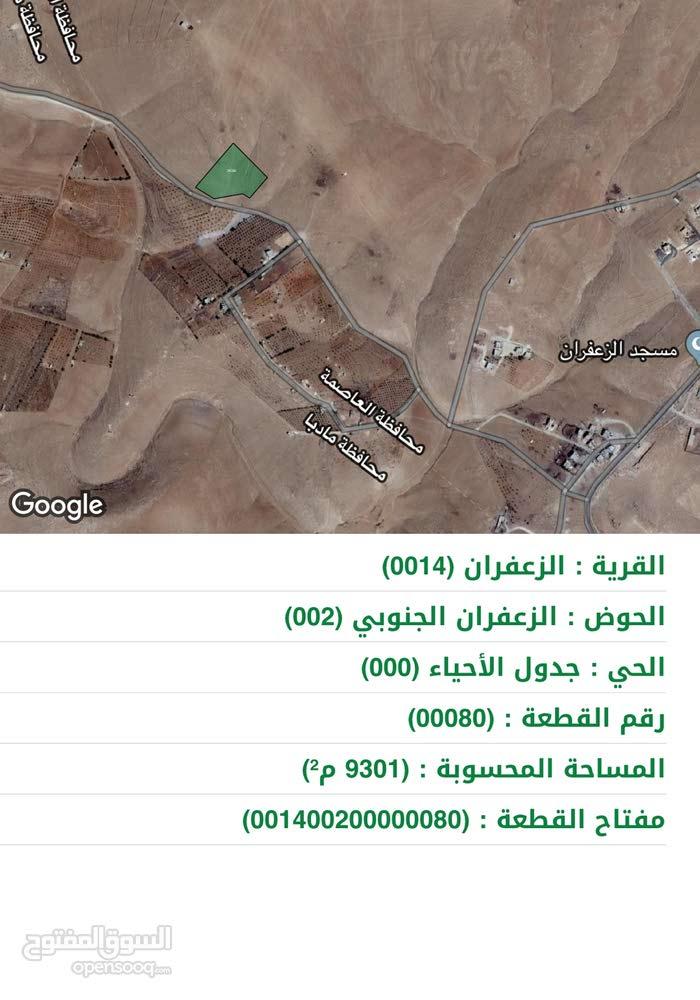 9500 م في الزعفران من اراضي جنوب عمان بسعر مغري