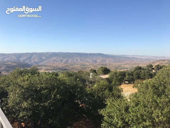 شاليه و مزرعة مع مسابح للايجار اليومي في منطقة زي
