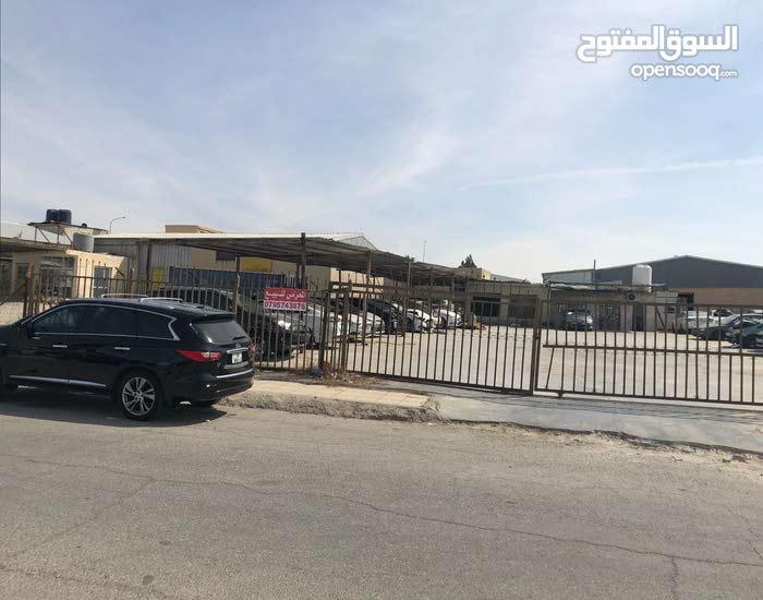 معرض سيارات للبيع في المنطقة الحرة