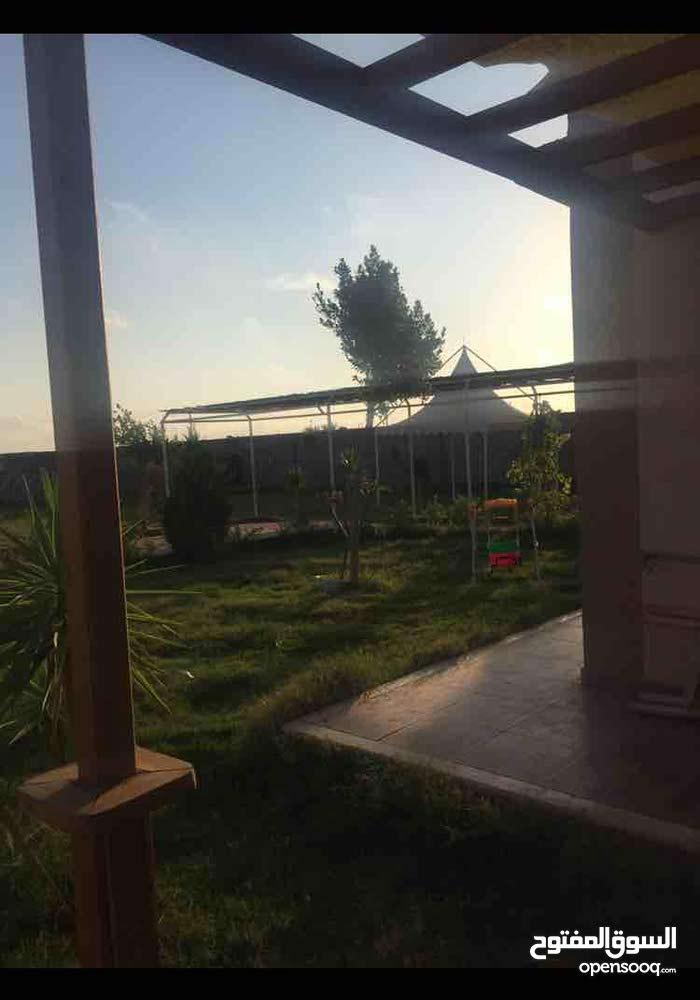استراحة في بوهادي