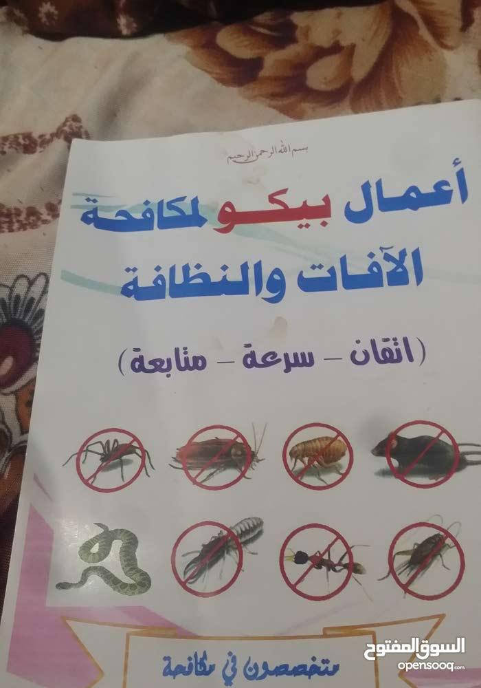 مكافحة الحشرات والنظافه