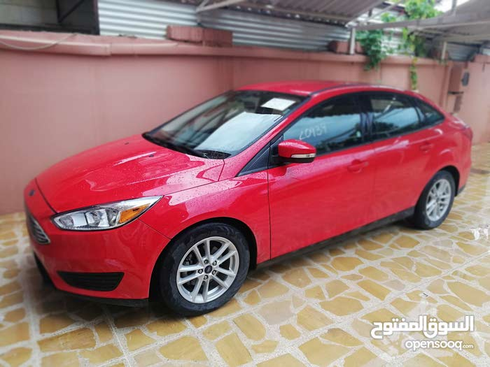 New condition Ford Focus 2017 with 10,000 - 19,999 km mileage