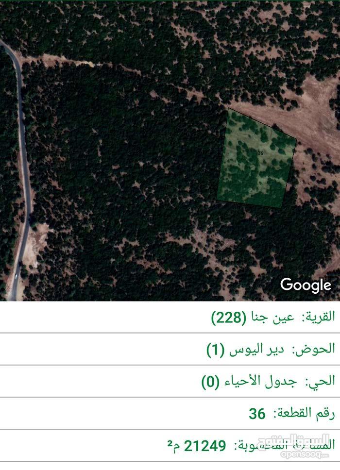 أرض للبيع في عجلون / منطقة اشتفينا