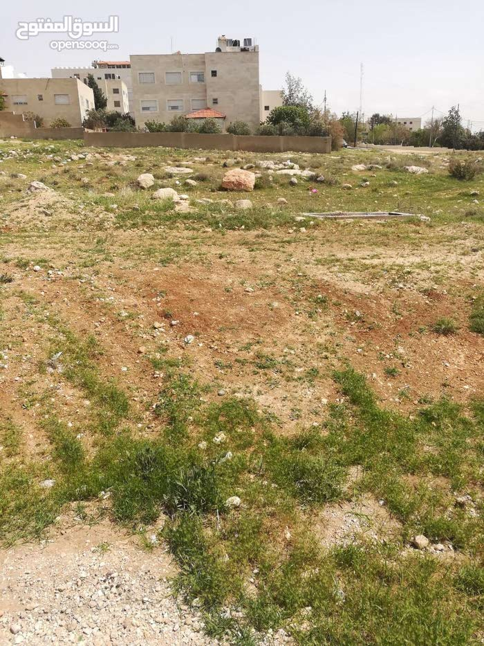 للبيع قطعة ارض بالقرب من جامعة العلوم التطبيقية شفا بدران
