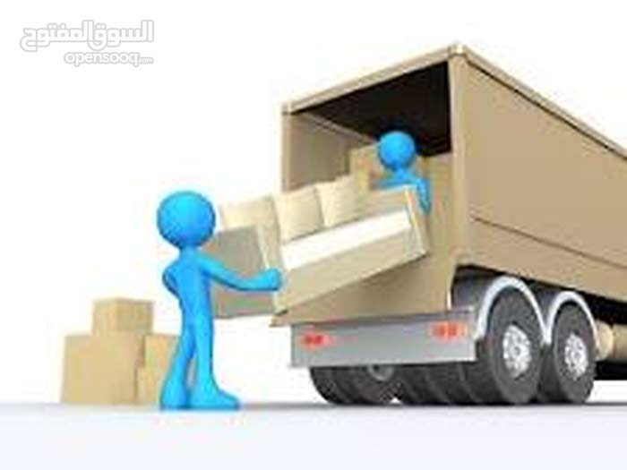 PROFESSIONALS PAKISTANI Movers Packers