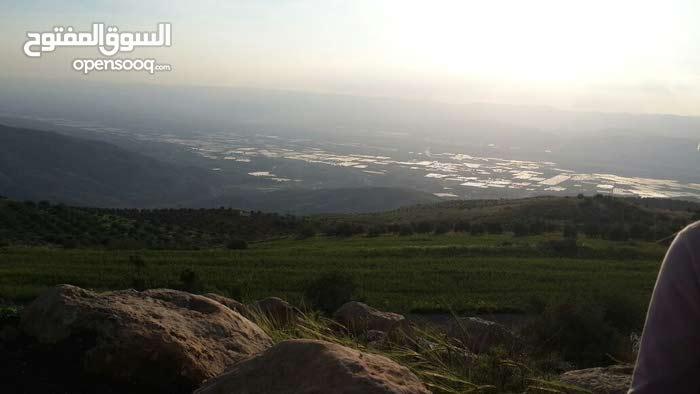 ارض زراعية للبيع في عجلون - منطقة راجب