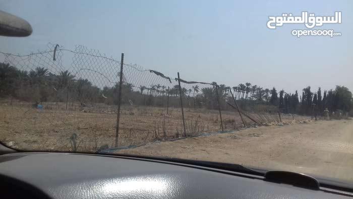 دنوم ارض للبيع في دير البلح
