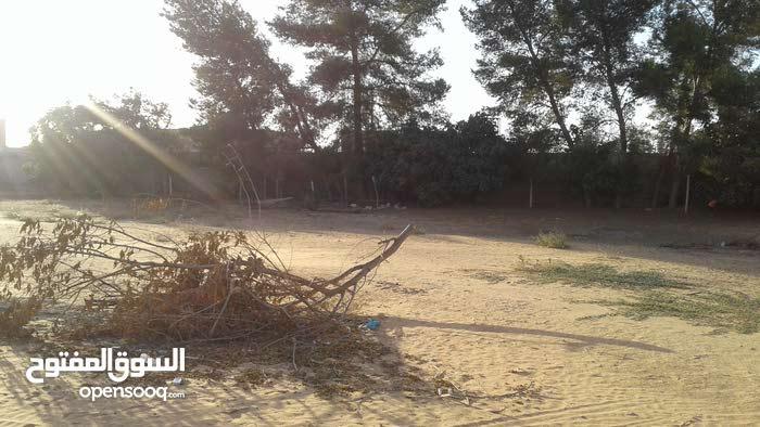 قطعة ارض للبيع في قصربن غشير