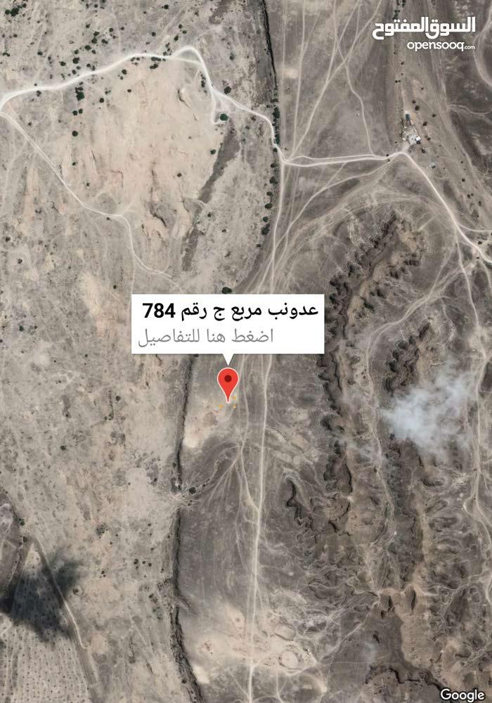 صلاله عدونب مربع ج رقم الارض  784 مساحه 600 متر  ،شبه ركنيه من سكه وشارع عرضه