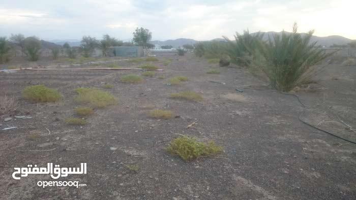 مزرعه للبيع القابل وادي نام الصرم