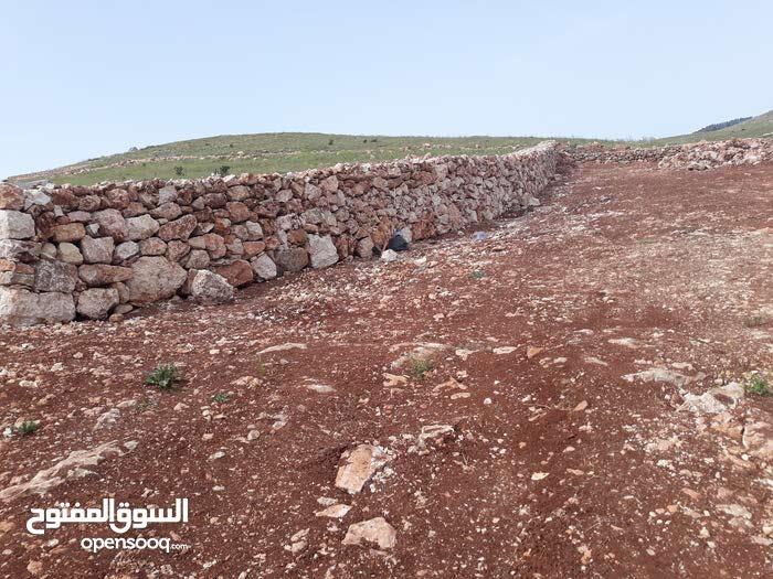 أرض للبيع شرق جرش قريه المدور قرب دحل
