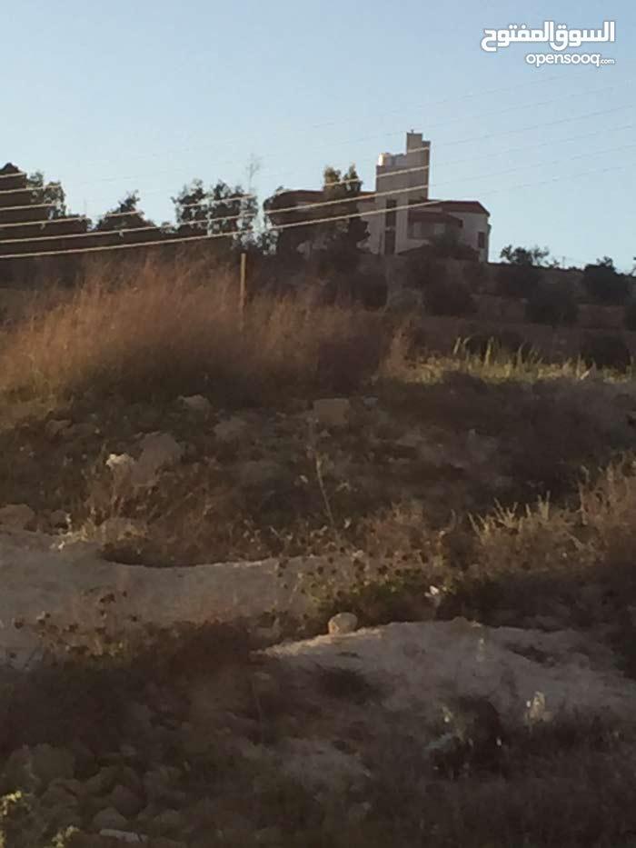 قطعة ارض 749 متر للبيع شفا بدران زينات الربوع حوض المكمان