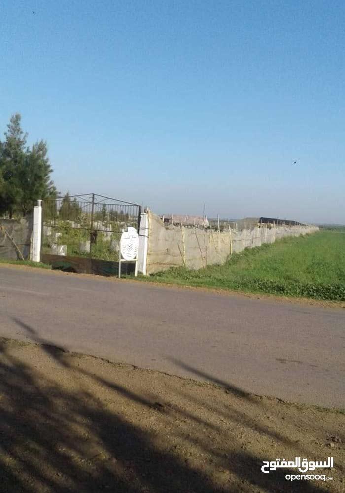 مزرعة للبيع مساحتها هكتار و نصف