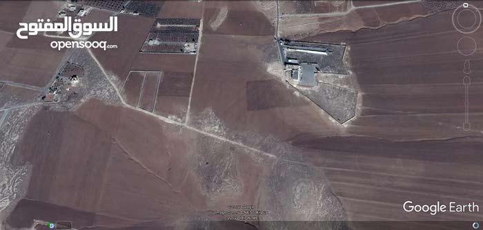 ارض 10 دونم في مادبا ماعين قرب قوات الدرك 15 ألف للدونم