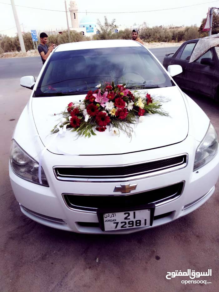 10,000 - 19,999 km mileage Chevrolet Malibu for sale