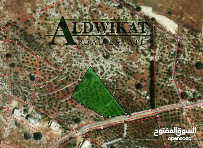 ارض للبيع في اجمل مناطق بدر حوض عراق الامير المساحة 4117 م