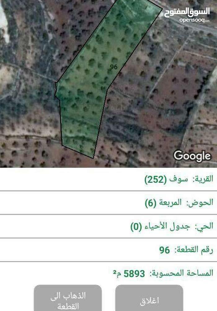 ارض للبيع موجوده في جرش على طريق محميه الامير حمزه و واصلها مياه و كهرباء و اسفلت امريكي