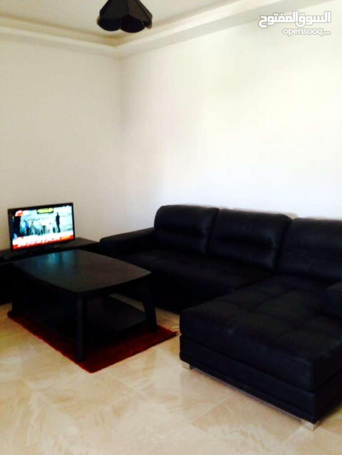 A nice furnished apartment for rent