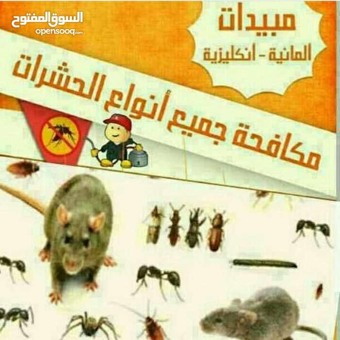 مكافحة الحشرات والقوارض ب ارخص الاسعار كفالة سنة